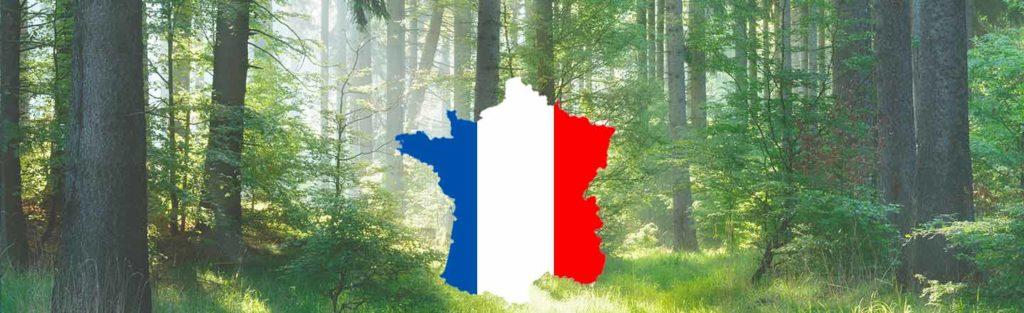 Webinar - Compenser ses émissions carbone en France